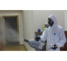 Уничтожение насекомых,тараканов,блох,грызунов,дезинфекция.От 1000руб. - Клининговые услуги в Севастополе