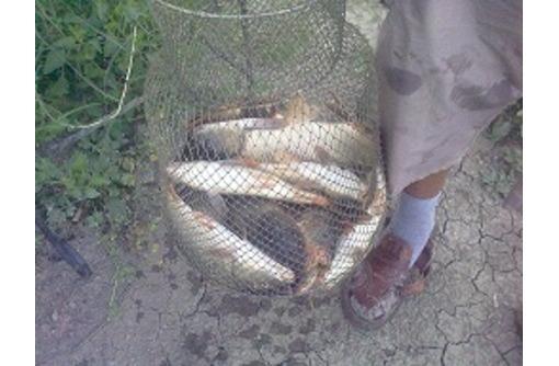 Рыбалка и отдых в Крыму, ловля карпа, карася, белого амура. - Хобби в Севастополе