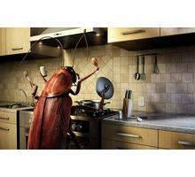 Профессиональные услуги по дезинфекции и дезинсекции, дератизации, устранение неприятного запаха. - Клининговые услуги в Севастополе