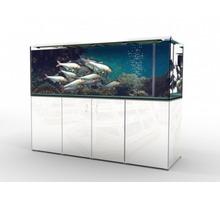 Торговые аквариумы для живой рыбы - Продажа в Севастополе