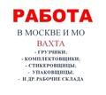 Вахта в Московской области - Логистика, склад, закупки, ВЭД в Щелкино