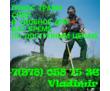 Спил деревьев, расчистка участков,  уборка и вывоз мусора в Севастополе, Балаклаве!, фото — «Реклама Севастополя»