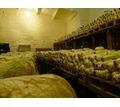 Строительство овощехранилищ и холодильных камер под ключ в Бахчисарае и Крыму - Услуги в Бахчисарае