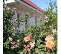 Сдам посуточно Гостевой дом из трех номеров, ОМЕГА - Аренда дач, времянок в Севастополе