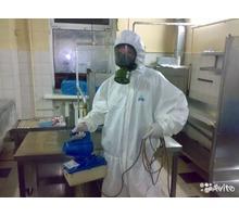 Уничтожение блох,тараканов,клещей.Дезинсекция,дератизация. - Клининговые услуги в Севастополе