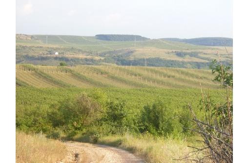 Продам земли сельскохозяйтственного  назначения в Бахчисарайском районе, фото — «Реклама Бахчисарая»
