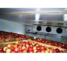 Холодильные Камеры для Фруктов Овощей Зелени. - Продажа в Симферополе