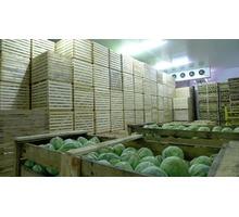 Овощехранилища Камеры Длительного Хранения Овощей.Установка под Ключ. - Продажа в Старом Крыму