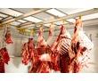 Камеры для Мяса  Морозильные  Холодильные с Установкой. Крым., фото — «Реклама Севастополя»