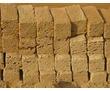 РАКУШКА(ЖЕЛТЯЧОК) В ВАШ РЕГИОН, фото — «Реклама Бахчисарая»