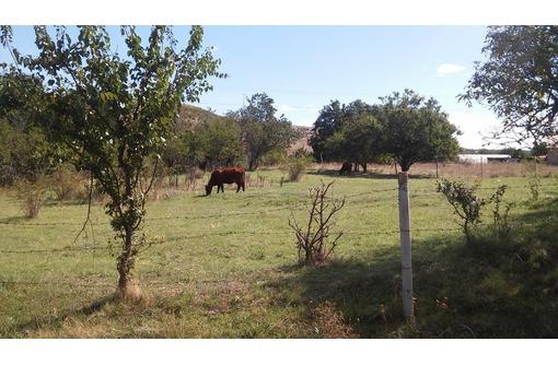 Продам земельный участок в с.Репино, фото — «Реклама Бахчисарая»