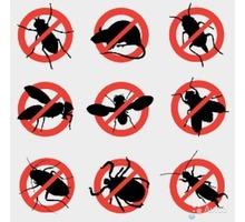 Дезинсекция. Полное выведение тараканов, блох, клопов, плесени и др. - Клининговые услуги в Ялте