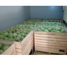 Холодильные камеры для капусты, овощехранилища. Холодильное оборудование. Проектирование. Монтаж - Продажа в Джанкое