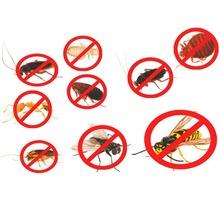Дератизация, дезинфекция, дезинсекция, уничтожение всех видов насекомых и грызунов - Клининговые услуги в Ялте