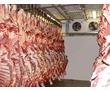 Камеры Холодильные для Мяса.Установка, Гарантия, Сервис., фото — «Реклама Севастополя»