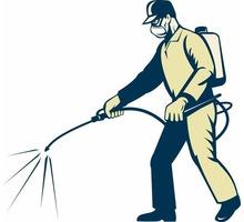 Борьба с насекомыми, вредителями, грызунами, продажа дезсредств - Клининговые услуги в Севастополе
