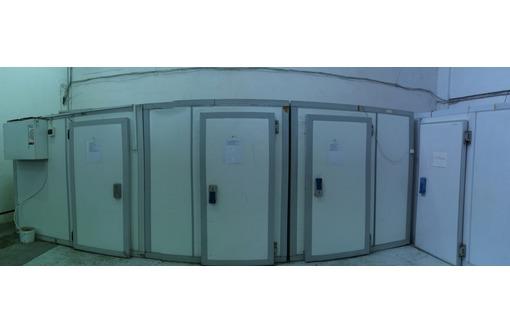 Холодильные камер и агрегаты для хранения и заморозки рыбы в Севастополе и Крыму под ключ. Гарантия! - Продажа в Севастополе