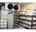 Холодильные агрегаты и установки для хранения и заморозки рыбы в Керчи под ключ. Холодильные камеры - Продажа в Керчи