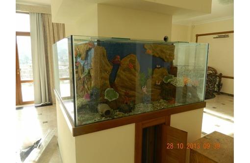 Изготовление аквариумов любой формы и размеров - Аквариумные рыбки в Севастополе