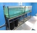 Изготовление аквариумов для торговли живой рыбой и раками в Крыму и Севастополе - Продажа в Севастополе