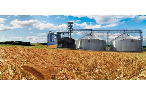 Уничтожение вредоносных насекомых и клещей в зерновой массе и при пересыпании, фумигация фосфином - Сельхоз услуги в Красноперекопске