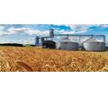 Уничтожение вредоносных насекомых и клещей в зерновой массе и при пересыпании, фумигация фосфином - Сельхоз услуги в Крыму