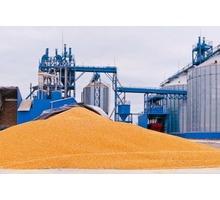 Уничтожение вредителей хлебных запасов, фумигация, газация зерна с гарантией - Сельхоз услуги в Феодосии
