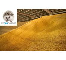Газация хлебных запасов от вредителей - Сельхоз услуги в Бахчисарае