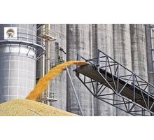 Обеззараживание зерна и продуктов переработки - Сельхоз услуги в Крыму