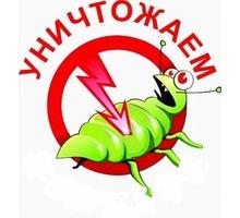 Уничтожение насекомых в зданиях различного типа: жилых и нежилых помещениях,  офисах, кафе и др. - Клининговые услуги в Симферополе