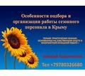 Особенности подбора и организации работы сезонного персонала в Крыму - Бизнес и деловые услуги в Крыму