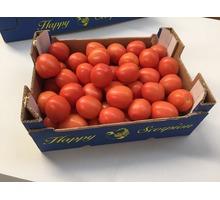 Продаем томаты из Испании - Продукты питания в Ялте