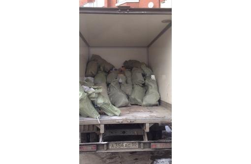 вывоз мусора зил камаз газель услуги грузчиков - Вывоз мусора в Севастополе