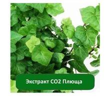 Купить Экстракт СО2 Плюща - Косметика, парфюмерия в Крыму