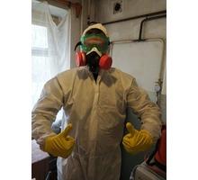 Уничтожение тараканов , клопов и других насекомых! - Клининговые услуги в Симферополе