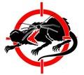 Уничтожим крыс и мышей! Оперативный выезд! - Клининговые услуги в Симферополе