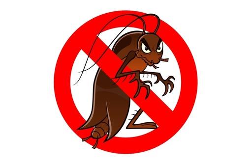Уничтожение тараканов , клопов и других насекомых! Эффект 100%! Звоните! - Клининговые услуги в Севастополе