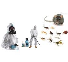 Уничтожение тараканов, комаров, клещей и других насекомых и грызунов! Эффективно 100%! - Клининговые услуги в Джанкое