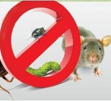 Ужас, у Вас завелись насекомые или грызуны! Звоните нам, мы их уничтожим! Эффект 100%! - Клининговые услуги в Симферополе