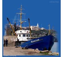 Рыба и морепродукты оптом с доставкой - Продукты питания в Ялте