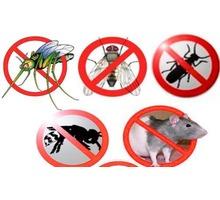 Профессиональное уничтожение мух, блох, клопов, тараканов, муравьев, клещей, комаров, моли и других! - Клининговые услуги в Ялте