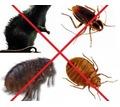 Дезинфекция(уничтожение насекомых) и дератизация(уничтожение грызунов)! Выдаем полный пакет документ - Клининговые услуги в Алупке