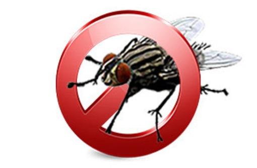 Обработка от мух и других насекомых в помещениях и на участках! Эффект 100%! Гарантия! Жмите! - Клининговые услуги в Саках