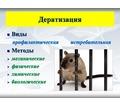 100% уничтожение грызунов любых видов ( крысы, мыши, полевки и т.п.) Средства безопасны для здоровья - Клининговые услуги в Симферополе