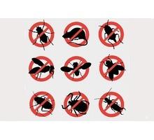 Гарантированное уничтожение любых насекомых, грызунов, вредных микроорганизмов! Профилактика вирусов - Клининговые услуги в Бахчисарае
