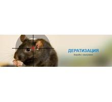 Профилактическая обработка и полное истребление грызунов! Полный пакет документов! Гарантия! - Клининговые услуги в Крыму