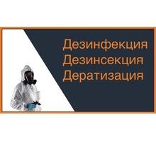 Уничтожение плесени! Профилактическая обработка от вредных микроорганизмов! Дезинсекция! Дератизация - Клининговые услуги в Старом Крыму