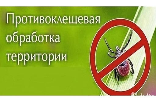 Расчистка участков, спил деревьев, уборка и вывоз мусора - Ландшафтный дизайн в Севастополе