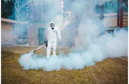 Уничтожение всех насекомых, грызунов и микроорганизмов за 1 раз!Дезинфекция, дезинсекция,дератизация - Клининговые услуги в Севастополе