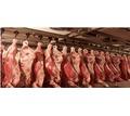 Холодильная камера и агрегаты для охлаждения мяса в Крыму. Доставка. Сборка. Монтаж. Сервис - Продажа в Симферополе